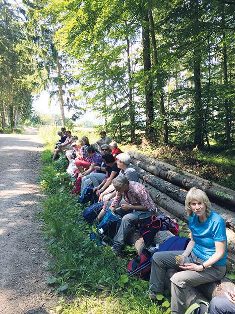 Wandern an der Steinbachtalsperre